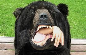 avocat-urs
